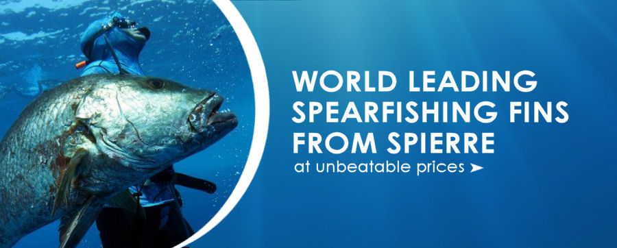 Worlds leading spearfishing fins